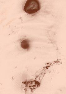 Sunography - Gradient Map